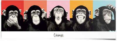 Reinders! Poster »Schimpanse Pop«, (1 Stück)