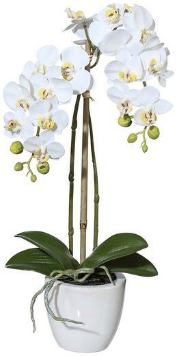 Kunstpflanze »Orchidee Phalaenopsis«, im Keramiktopf, Höhe 43 cm, weiß