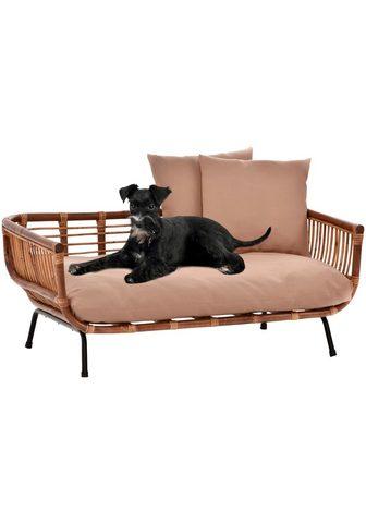 SILVIO design Sofa gyvūnėliams »Fay« BxLxH: 90x57x45...