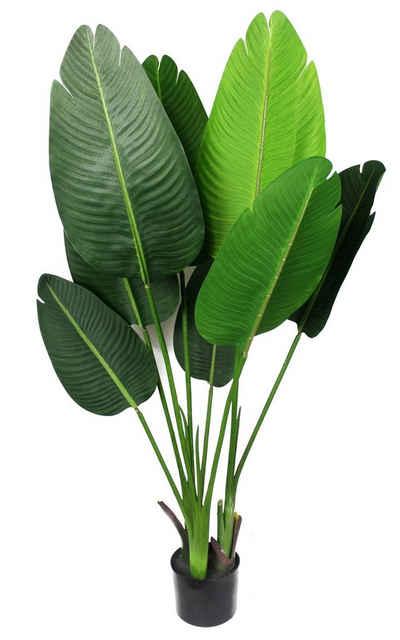 Kunstpflanze »Künstliche Pflanze KP800600« Strelizie Paradies Pflanze, Arnusa, Höhe 120 cm, Fertig im Topf