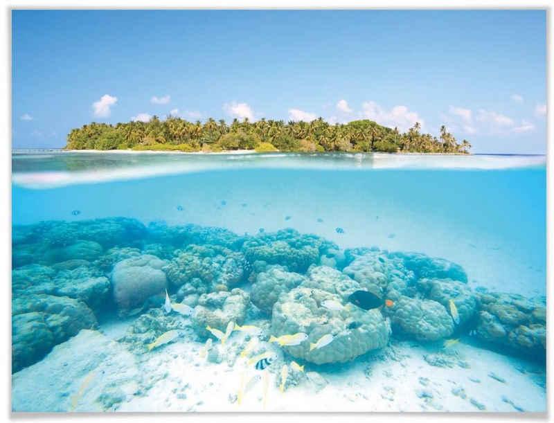 Wall-Art Poster »Unterwasserwelt Malediven«, Meer (1 Stück), Poster, Wandbild, Bild, Wandposter