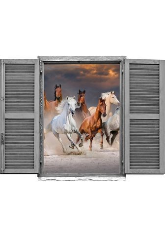 queence Wandtattoo »Pferde« (1 vienetai)