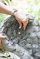 HEISSNER Bachlaufschale , BxTxH: 53x73x7 cm, sandfarben, Bild 3