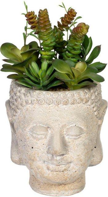 Künstliche Zimmerpflanze »Sukkulentenarrangement« Sukkulente| Creativ green| Höhe 25 cm| im Gefäß aus Zement | Dekoration > Dekopflanzen > Pflanzen | Creativ green