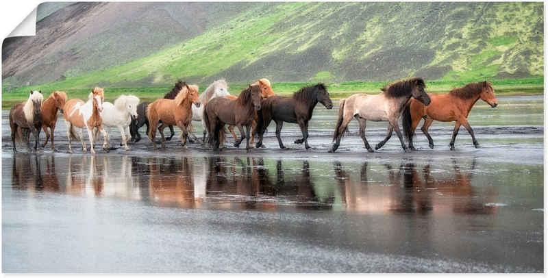 Artland Wandbild »Isländische Pferde XIV«, Haustiere (1 Stück), in vielen Größen & Produktarten - Alubild / Outdoorbild für den Außenbereich, Leinwandbild, Poster, Wandaufkleber / Wandtattoo auch für Badezimmer geeignet