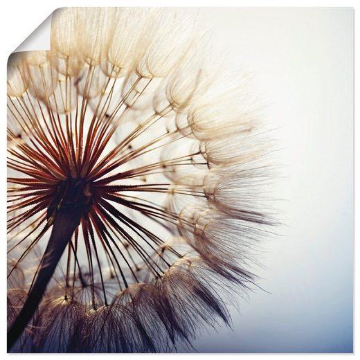 Artland Wandbild »Große Pusteblume«, Blumen (1 Stück), in vielen Größen & Produktarten - Alubild / Outdoorbild für den Außenbereich, Leinwandbild, Poster, Wandaufkleber / Wandtattoo auch für Badezimmer geeignet