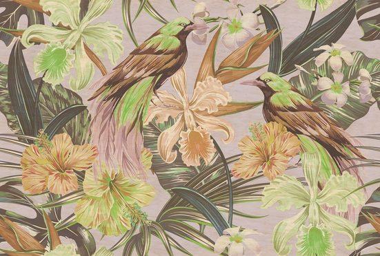 Fototapete »Walls by Patel Exotic Birds 2«, Premium Vlies