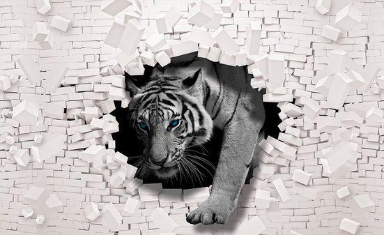 CONSALNET Vliestapete »3D Tiger«, verschiedene Motivgrößen