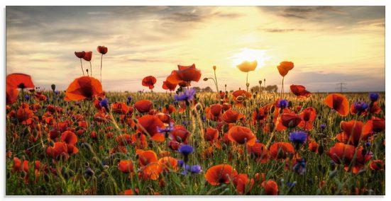 Artland Glasbild »Mohnblumenwiese«, Blumen (1 Stück)
