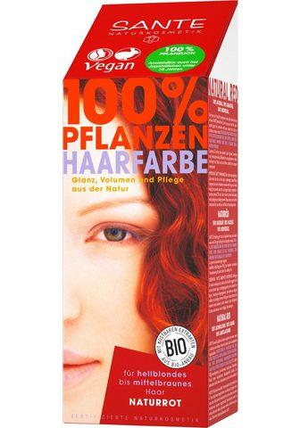 SANTE Haarfarbe »Pflanzenhaarfarbe naturrot«...