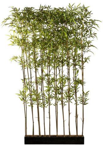 Creativ green Künstliche Zimmerpflanze »Bambusraumte...