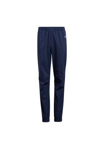 adidas Performance Sportinio stiliaus kelnės »Primegreen ...