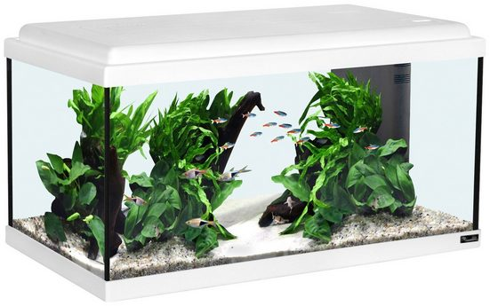 AQUATLANTIS Aquarium »Advance 60 LED«, 54 Liter, BxTxH: 60x30x34 cm, weiß