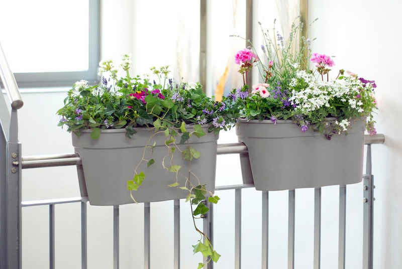 KHW Balkonkasten »Flowerclip XL« (Set, 2 Stück), BxTxH: 57x27x28 cm