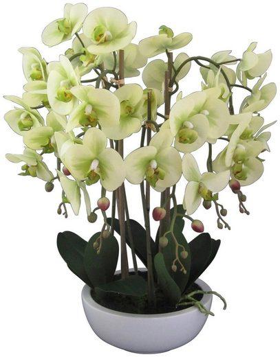 Kunstpflanze »Orchidee Phalaenopsis« Orchidee, Creativ green, Höhe 66 cm, in Keramikschale