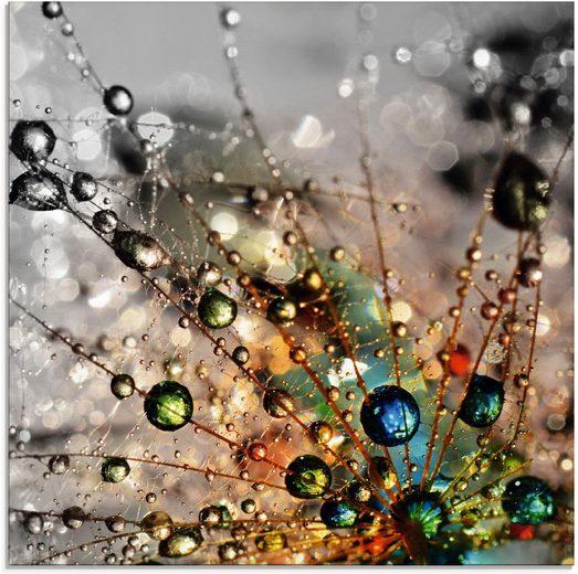 Artland Glasbild »Farbenfrohe Natur«, Blumen (1 Stück)