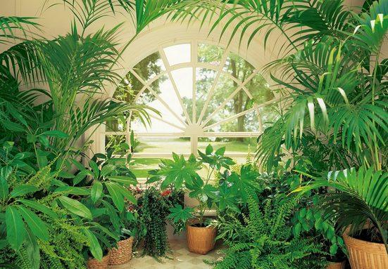 Fototapete »Wintergarten«, 8-teilig, 366x254 cm