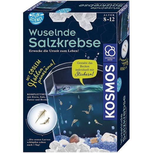 Kosmos Lernspielzeug »Fun Science Wuselnde Salzkrebse«