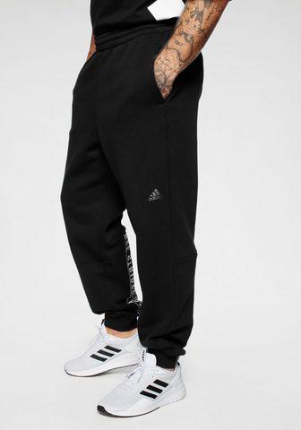 adidas Performance Sportinės kelnės »MUST HAVE WORD kelnė...