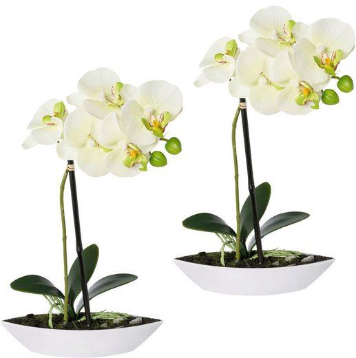 Kunstorchidee »Phalaenopsis«, Creativ green, Höhe 30 cm, 2er Set, in Kunststoffschale