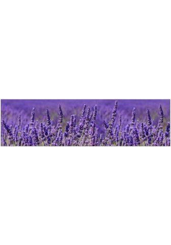 MySpotti Küchenrückwand »profix Lavendel 220x60...