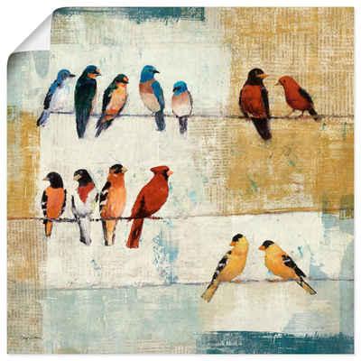 Artland Wandbild »Die üblichen Verdächtigen«, Vögel (1 Stück), in vielen Größen & Produktarten -Leinwandbild, Poster, Wandaufkleber / Wandtattoo auch für Badezimmer geeignet