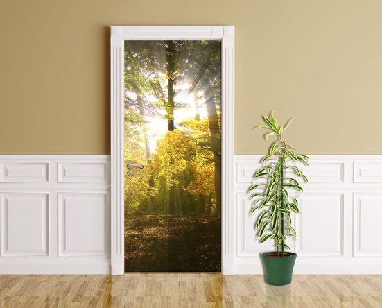 Bilderdepot24 Türtapete, Sonnenstrahlen im Wald, selbstklebendes Vinyl