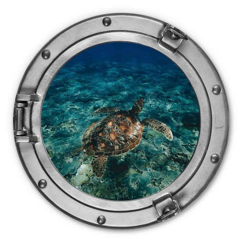 K&L Wall Art Metallbild »Metallbild Rund Metall Wandbild 3D Optik Bullauge U-Boot Fenster Schildkröte«