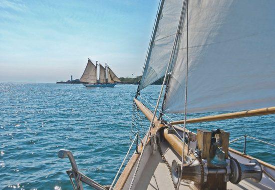 Komar Fototapete »Sailing«, glatt, Meer, Wald, bedruckt, (Set), ausgezeichnet lichtbeständig