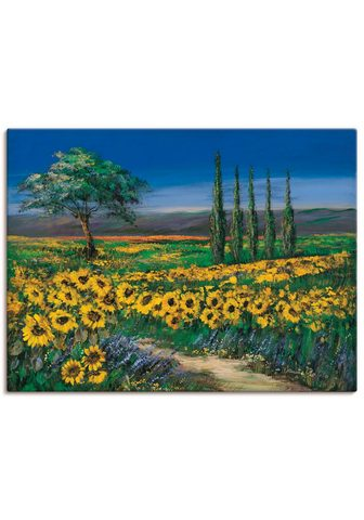 Artland Paveikslas »Sonnenblumenfeld« Blumen (...