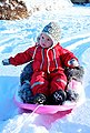 STIGA Sports Schlitten »Snow Cruiser Grün«, BxL: 53x67 cm, Bild 3