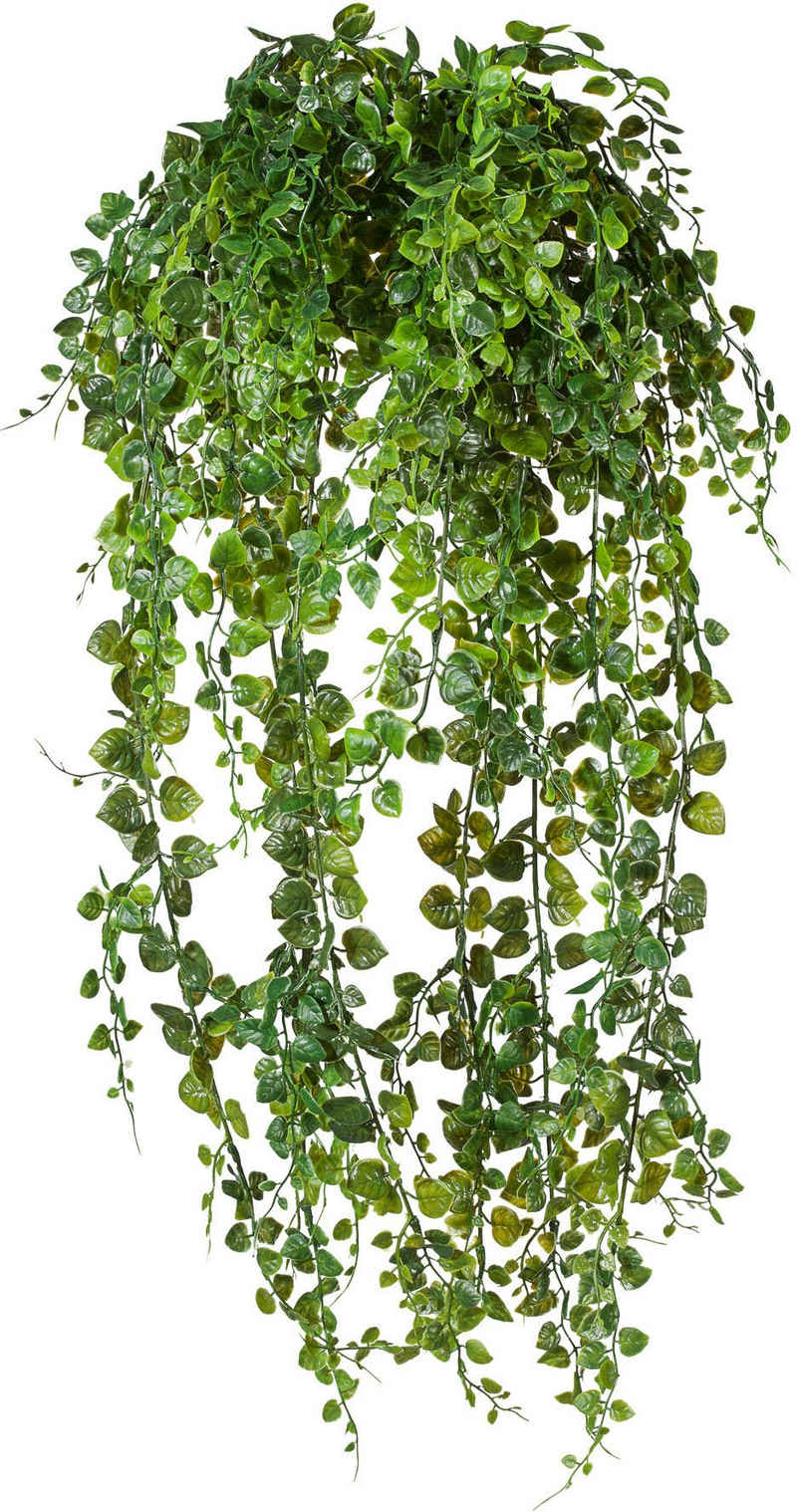 Kunstranke »Adianthumhänger« Blatthänger, Creativ green, Höhe 60 cm