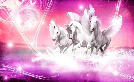 CONSALNET Fototapete »Weißer Pegasus«, Papier, in verschiedenen Größen
