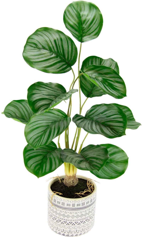 Kunstpflanze »Lennja« Korbmarante, andas, Höhe 58 cm, im Keramiktopf
