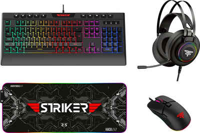 Hyrican »Striker Gaming Sparset Level Silver« Eingabegeräte-Set, (ST-GKB8115 + ST-GM005 + ST-MP25B + ST-GH530)
