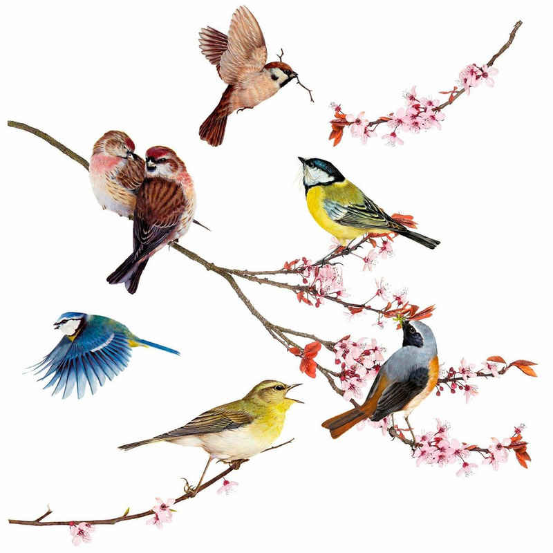Komar Fensterbild »Vögel«, 31x31 cm, selbsthaftend