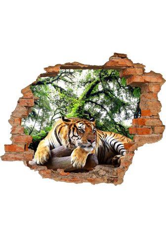 Conni Oberkircher´s Conni Oberkircher´s Wandsticker »Tiger...