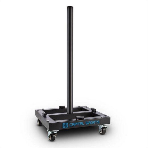 Capital Sports Gewichteplatten »Compristar Gewichtsscheiben-TrolleySchwerlastrollen 300 kg max.«