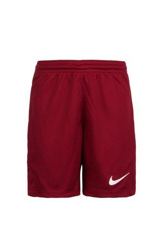 Nike Trainingsshorts »Dry Park Iii«