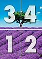 Fototapete »Provence«, 4-teilig, 183x254 cm, Bild 4