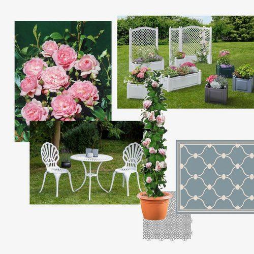 rosen-balkon-romantisch-verspielt-5c86878b9c80de0c59f595e5
